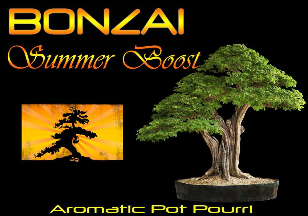 Bonzai Summerboost Räuchermischung